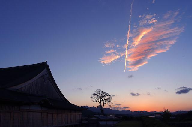 篠山城跡大書院 (5)